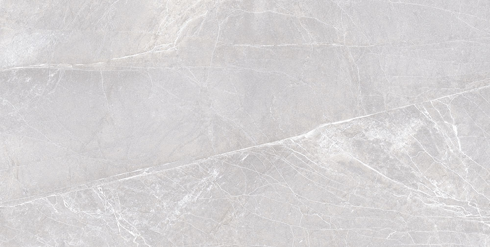 PICENO Gris 60×120 24″x48″ Polished Rectified